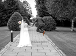 Ian Moore Photography €980
